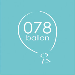 Nieuwe website: 078ballon.nl