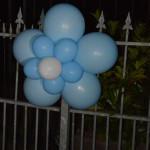 ballondecoratie_trossen_22.JPG