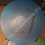 ballonnen-met-opdruk-11.jpg