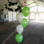 heliumballonnen-44.jpg