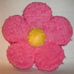 pinata-bloem.png